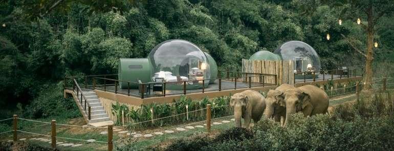 Прозрачные шатры на курорте Anantara